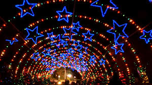 Zoo Lights Houston by Top 5 Holiday Destinations In Texas