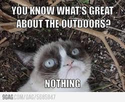 Grumpy Cat Friday Meme - 5 best photos of the grumpy cat internet meme socialeyezer