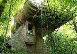 all about unique facts Tree Houses World Most Amazing Tree Houses