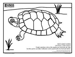 franklin hopping spread hands coloring pages kids