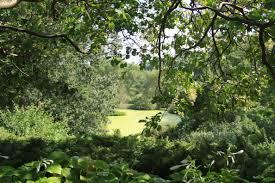 mn landscape arboretum minnesota landscape arboretum my minnesotan moments
