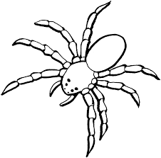 spider coloring pages halloween spider coloring pages printable