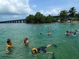 Florida snorkeling images 14 must visit snorkeling spots in florida with photos jpg