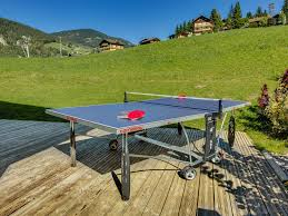 Table De Ping Pong Outdoor Pas Cher by Lodge Le Grizzly Best Prices Official Site
