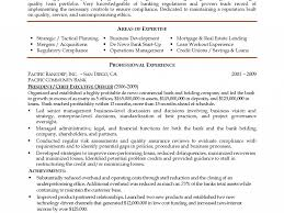 Executive Summary For Resume Sample by 93 Executive Summary For Resume Examples Resume Writing