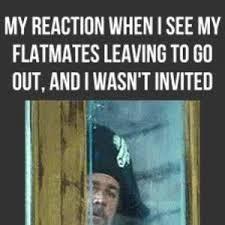 Housemate Meme - mrw i see my flatmates leaving by reactiongifs meme center
