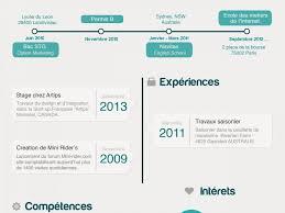 infographic resume creator lukex co