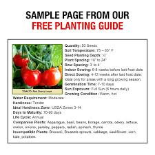 Florida Vegetable Gardening Guide by Amazon Com Heirloom Seeds Non Gmo Vegetable Seed Kit 50