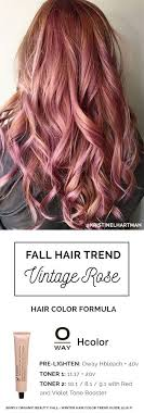 hair color formula rose gold hair color formula best 25 hair color formulas ideas on