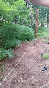 21 best low ropes course images on pinterest ropes games and