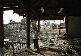 the tsunami u0027s wake