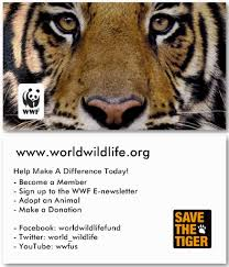 wwf help make a difference by notveryathletic on deviantart