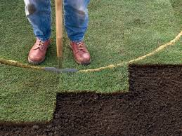 how to lay sod hgtv