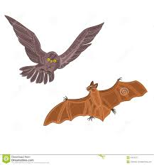 halloween owl halloween owl and bat vector stock vector image 43676373