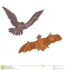 halloween owl and bat vector stock vector image 43676373
