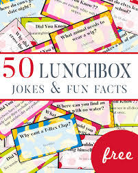 lunchbox jokes facts for children one beautiful home