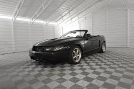 2003 Black Mustang 2003 Ford Mustang Svt Cobra For Sale Carsforsale Com
