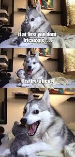 Dog Cooking Meme - bad pun dog memes imgflip