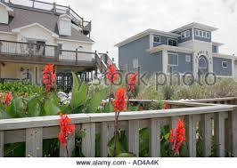 Cottage Rentals Virginia Beach by Virginia Beach Virginia Sandbridge Beach House Cottage Rental Sand