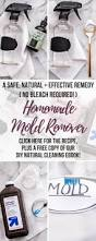 diy mold remover how to get rid of black mold naturally without
