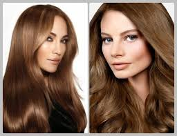 light brown hair color pictures light brown hair color with highlights hair fashion online