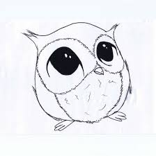 owl drawings for children 1000 images about owls draw on