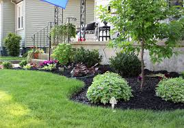 flower ideas for front of house