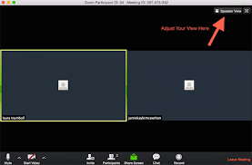 layout view zoom video faq jean houston