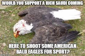 America Eagle Meme - windmill killing eagles memes imgflip