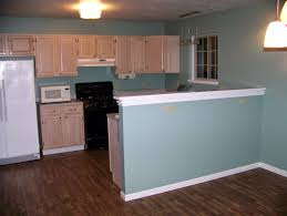Paint Wood Paneling White Dining U0026 Kitchen How To Build Pickled Oak Cabinets For