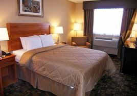 Comfort Inn Times Square Ny Comfort Inn Times Square West New York Travelpony Hotel Deals