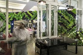 joseph cuisine design the great green wall installation by joseph barakat beirut