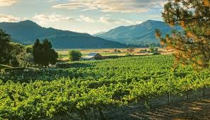 Valley Oregon Pedal And Sip In The Applegate Valley Travel Oregon