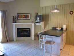 Free Standing Gas Fireplace by Freestanding Gas Fireplace On Custom Fireplace Quality Electric