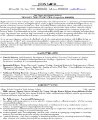 government resume resume templates