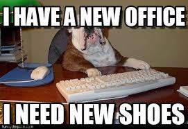 Office Boss Meme - i have a new office dog boss meme on memegen