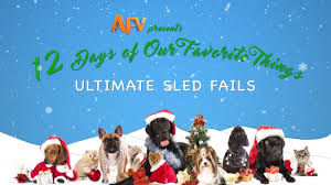 afv u0027s 12 days of christmas ultimate sledding fails winter