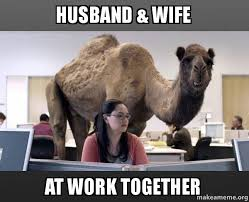Get To Work Meme - 39 amusing hump day work memes images pictures picsmine