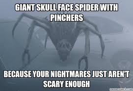 Funny Spider Meme - funny spider meme google search omg pinterest spider