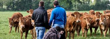 chambre r馮ionale d agriculture pays de la loire agriliaformation qui sommes nous plateforme régionale formation