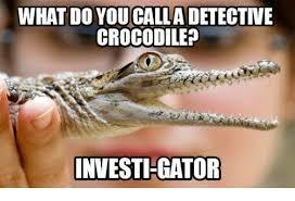 Crocodile Meme - what do you calla detective crocodile investigator meme on me me