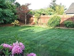 Inexpensive Backyard Landscaping Ideas Simple Backyard Landscaping Ideas Pictures And Lovely Interior