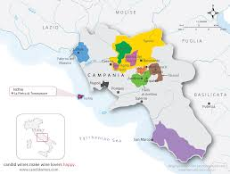 Ischia Italy Map by Regional Maps Candid Wines