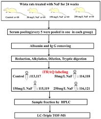 ijms free full text itraq based proteomics analysis of serum
