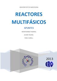 iborra tejero cunill 2013 reactores multifasicos