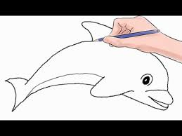 coloring fabulous dolphin draw easy drawing dolphins