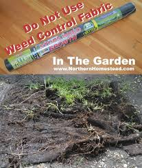 do not use weed control fabric in the garden northern homestead