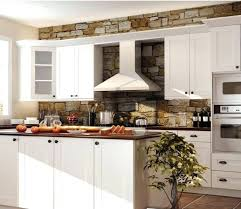 Modern Ideas Kitchen Best Rta Cabinets Reviews Wholesale Solid Wood