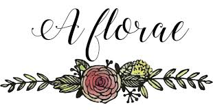 Flowers In Longmont Co - a florae u2013 fine flowers