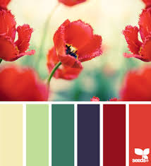 flora palette flora poppies and design seeds